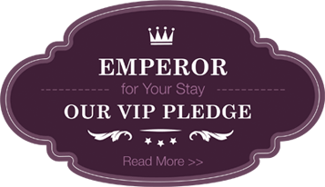 Our VIP Pledge