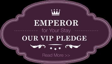 Our VIP Pledge
